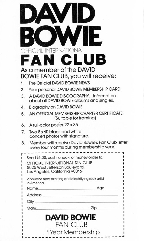 David Bowie International Fan Club