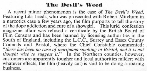 The Devil's Weed
